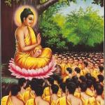 Buddha Disciples