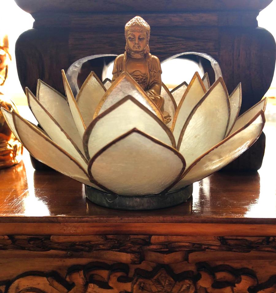 Lotus Root Training